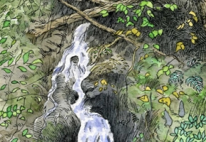Feeding the Green River