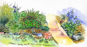 watercolor and ink garden