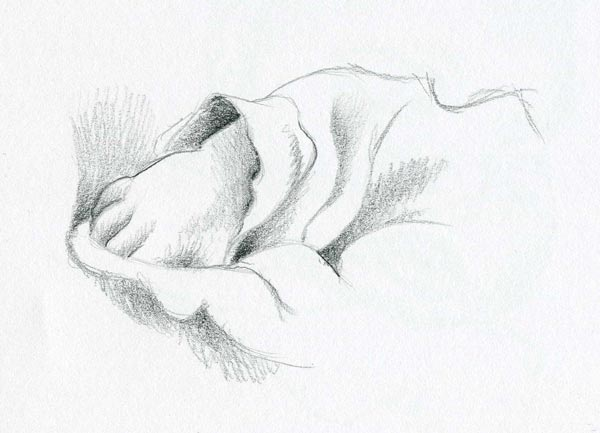 baby hand sketch